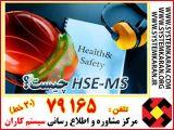 HSE-MS چیست ؟